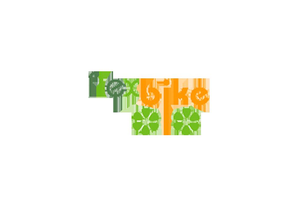 http://www.flexbike.fr